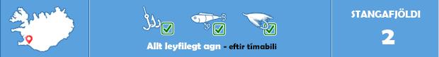 Baugstaðarós - Veiðistaðavefurinn