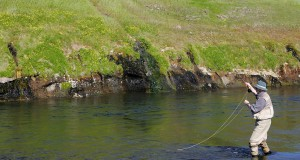 Svartá í Skagafirði