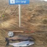 Steinsmýrarvötn - Veiðistaðavefurinn