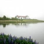 Elliðavatn - Veiðistaðavefurinn