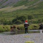 Móra - Veiðistaðavefurinn